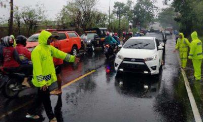 TANGGAP BENCANA: Petugas saat mengevakuasi pohon tumbang. (imam)