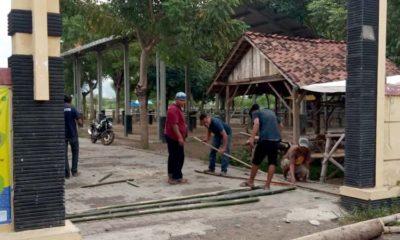Pandemi Covid-19 Pasar Hewan Besuki Kembali Dibuka Setelah 3 Bulan Ditutup