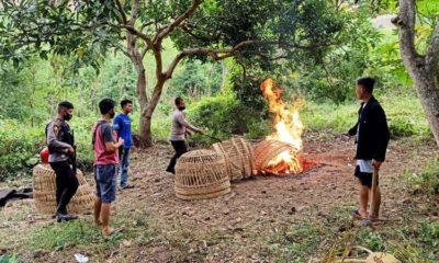Polisi obrak-abrik arena sabung ayam di Kecamatan Kendit. (im)